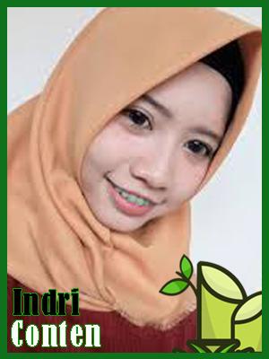 Indri conten