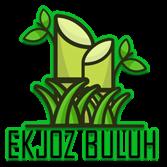 Logo-Ekjoz